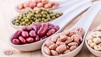 Fazole jsou hodnotným zdrojem bílkovin