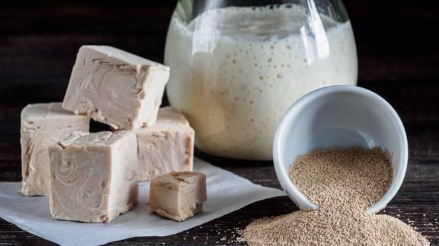 Jaký je rozdíl mezi sušenými a čerstvými kvasnicemi / droždím?