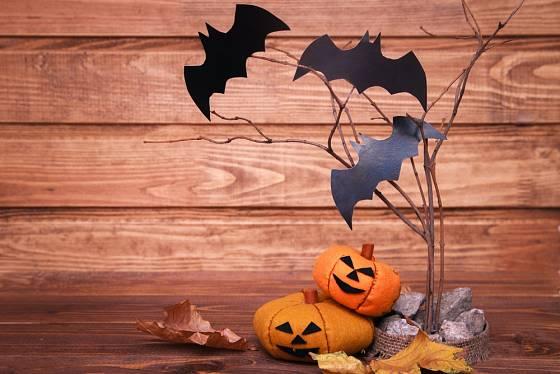Dýně, netopýři a spadané listí patří na Halloween k sobě.