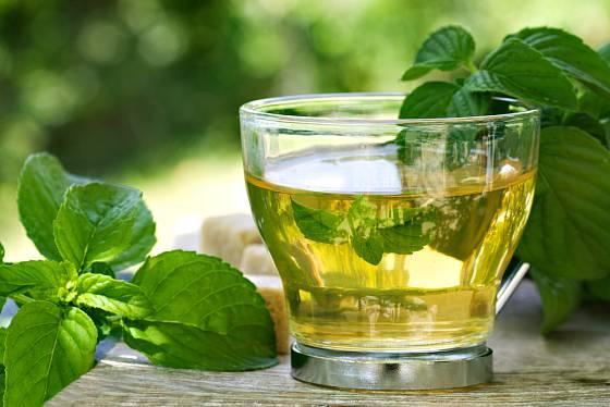 Mátový čaj osvěží a uleví při řadě obtíží