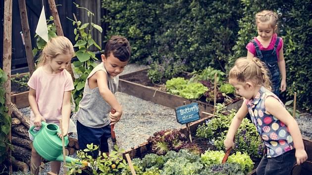 Děti zalévají vyvýšený záhon.