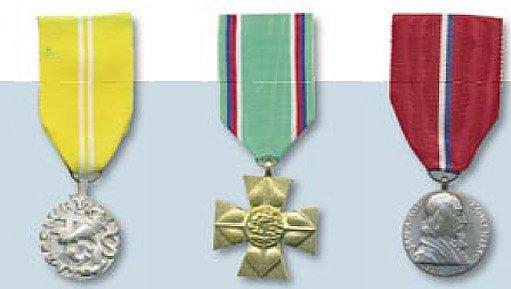 Medaile Za zásluhy ČSFR, Zlatý Záslužný kříž a Medaile Komenského