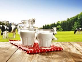 Kravské mléko je nejběžnější