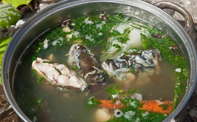 Polévka z kapra je chutným elixírem zdraví