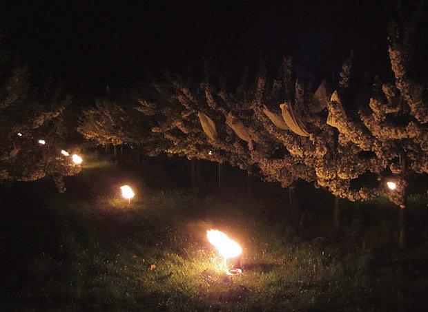 hořící protimrazové svíce