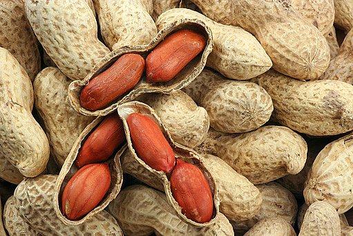 alergie na ořechy