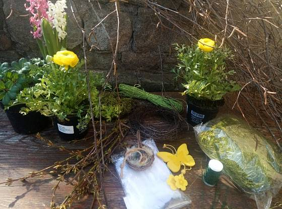 Potřebné pomůcky a rostliny pro jarní aranžmá.