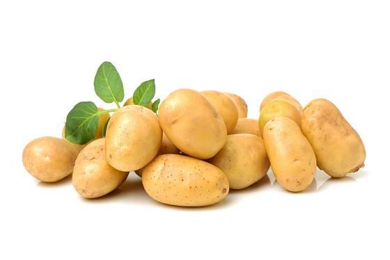 Rané brambory se nemusí loupat.