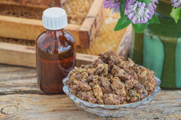 Propolis je včelí produkt výjimečných vlastností