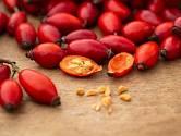 Šípky jsou bohatým zdrojem vitaminů a minerálních látek.