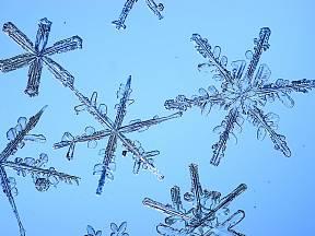 Rozmanitost sněhových vloček je možné zachytit i fotoaparátem.