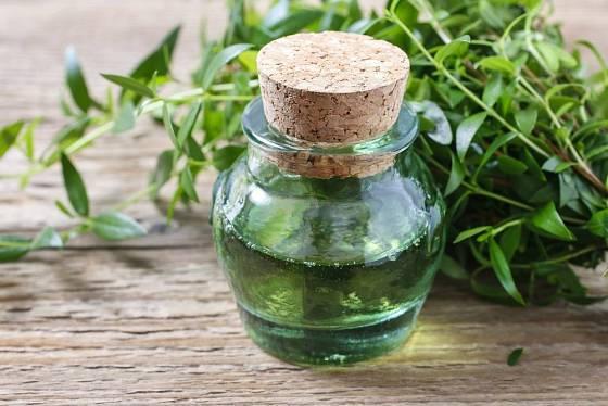 myrta může ochutit olej i ocet