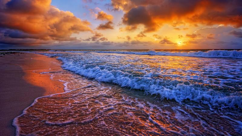Meditace: zvuk Tichého Oceánu.