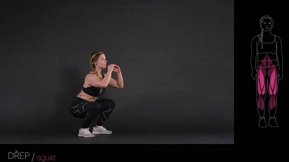 Dřep / squat
