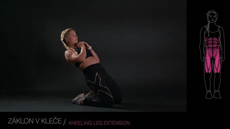 Záklon vkleče / kneeling leg extension