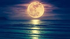 Astrologie: Přichází úplněk v rybách, chvíle na otevření své mysli