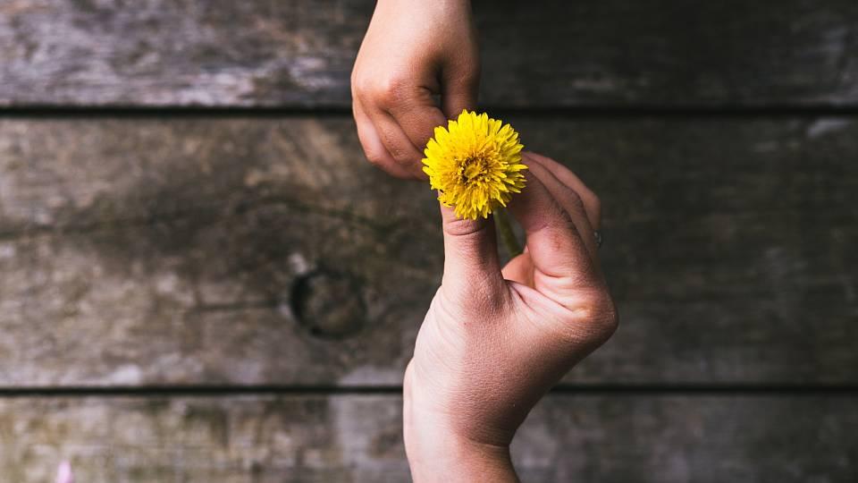 Laskavost – kde ji čerpat a jak ji předávat