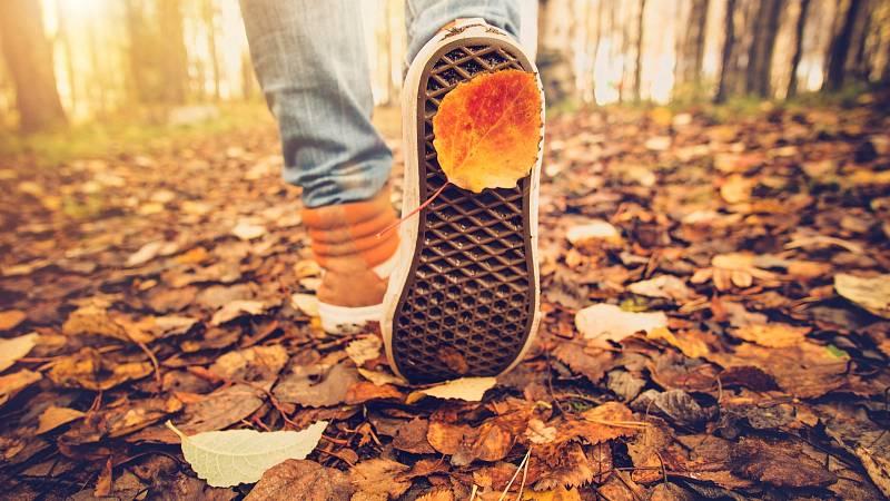 Tipy na podzimní splín: Pomůže hlavně příroda