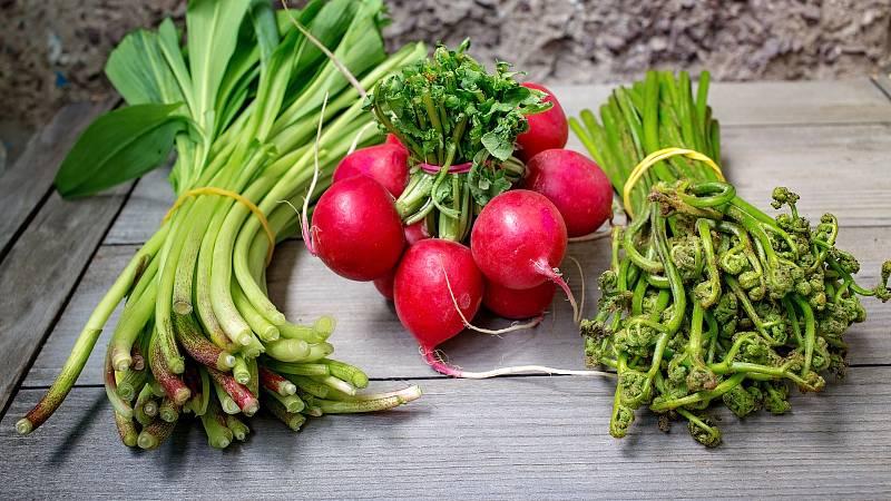 Na jaře zařaďte do jídelníčku suroviny, které vám dodají vitamíny. Sáhněte třeba po medvědím česneku nebo ředkvičkách.