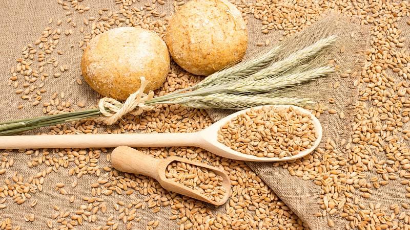 Bezlepková strava: pšenice ano či ne
