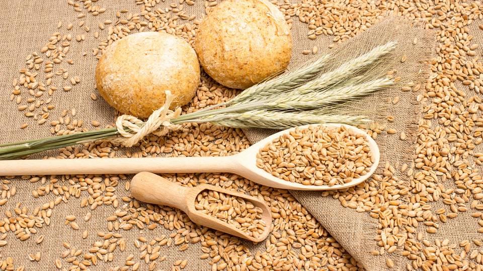 Pšenice vyšla z módy