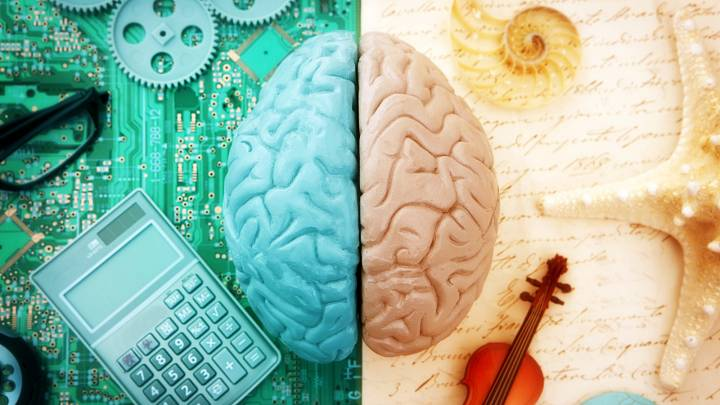 Jak ovlivňuje dominance mozkových hemisfér naše dovednosti