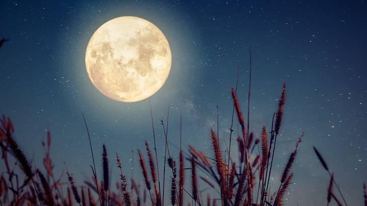 Měsíc v býku