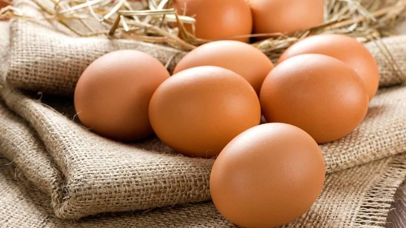 Poslední výzkumy dokazují, že vajíčka jsou zdravá. Teď letí omega vejce, ta jsou nejzdravější.