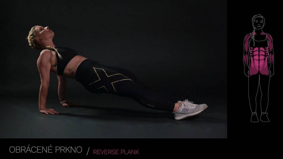 Obrácené prkno / reverse plank