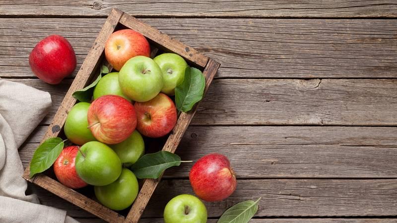 jablka. Bohatství přírody plné vitamínů.