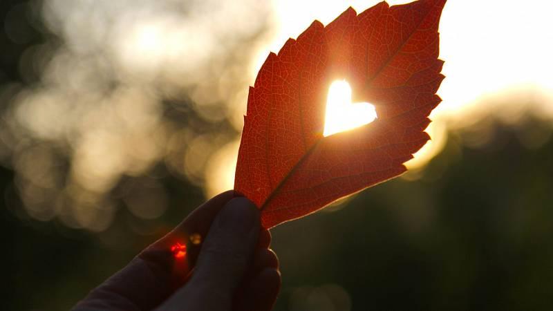 Světový den srdce aneb Naslouchej své intuici a důvěřuj procesu