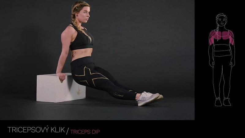 Tricepsový dip / triceps dip