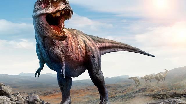 Vloni vříjnu tomu bylo 115 let, kdy byl Tyrannosaurus rex poprvé popsán jako druh.