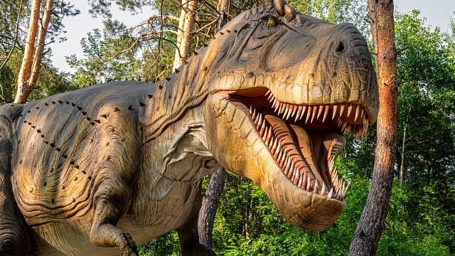 Přední končetiny T-rexe tvořilo totiž vždy jen 13 kostí, přičemž celkově pracky měřily asi 0,8–1 m.