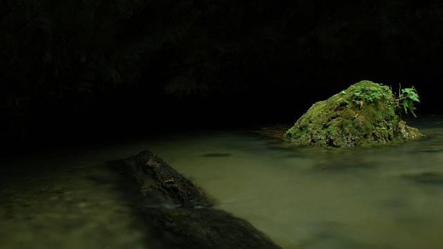 Jedna s jeskyní v Blue Hole