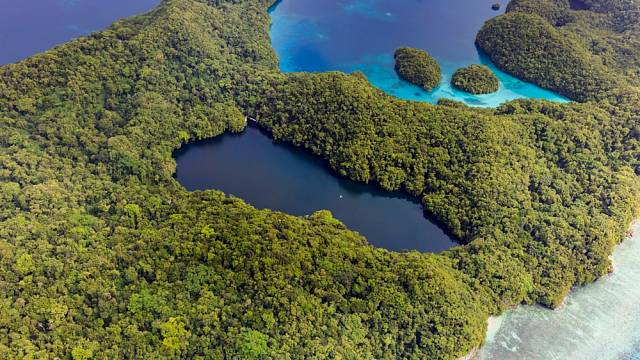 Palau je domovem více než 50 různých mořských jezer
