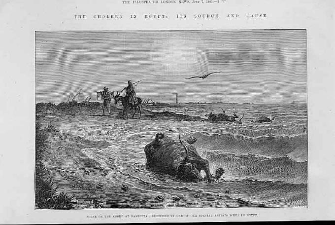 Epidemie cholery v Egyptě roku 1883.