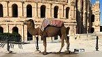 Zažijte Tunisko jinak