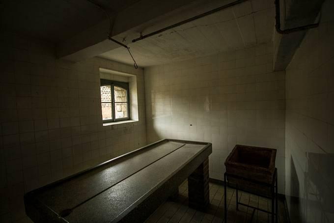V Osvětimi skončila dívka v nemocnici a byla atrakcí pro Mengeleho. Nakonec ji nechal spálit.