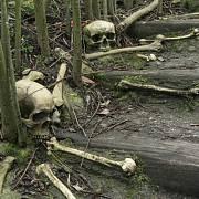Kanibalismus nebyl našim předkům cizí.