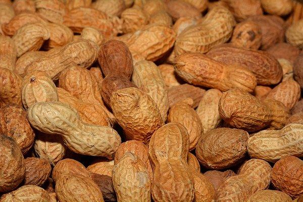 Vitamín E obsahují burský oříšky.