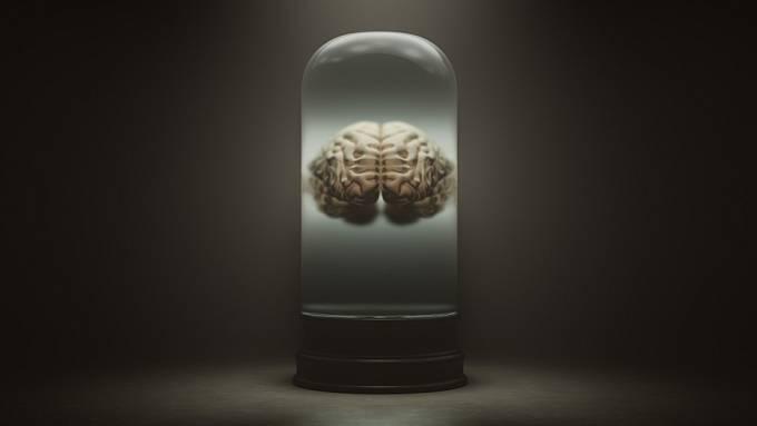 Schimakův mozek po popravě posloužil vědeckým účelům.