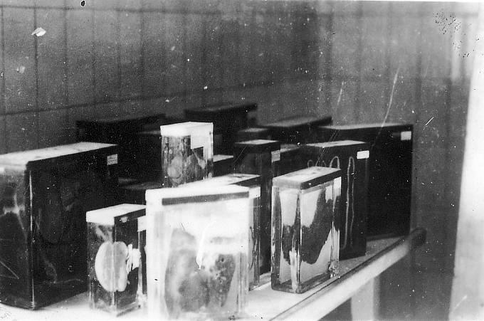 """Některé """"upomínkové"""" předměty, které vězni vyráběli z lidské kůže, kostí a vysušených hlav vězňů pro Ilse Koch."""