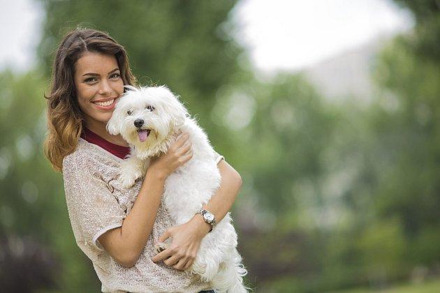 Maltézský psík potřebuje hodně lásky.