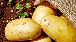 Udělejte zábal ze syrových brambor.