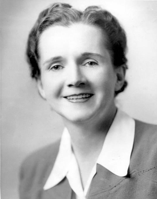 Bioložka Rachel Carson publikovala, že DDT se akumuluje v tkáních živočichů v lokalitách daleko vzdálených od míst jeho nasazení. Výsledkem masového ohlasu knihy byl vznik občanského ekologického hnutí a DDT bylo zakázáno používat.