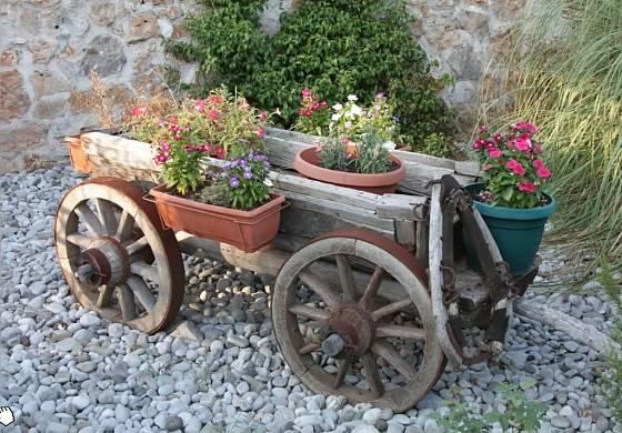 Pod rukama šikovného zahradníka rozkvete všechno.