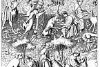 Psáři se starali o lovecké psy.