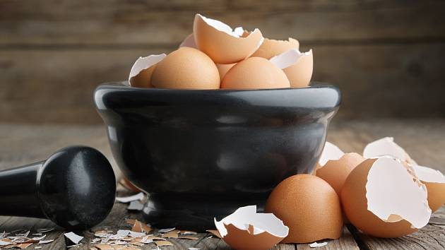 Podrcené vaječné skořápky můžeme využít v boji proti slimákům.