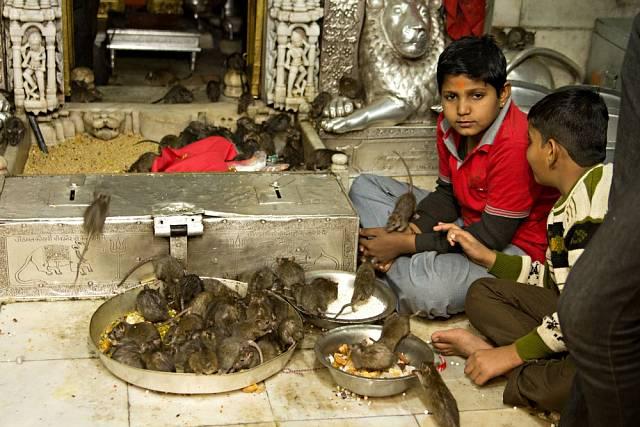Věřící hinduisté si zouvali boty